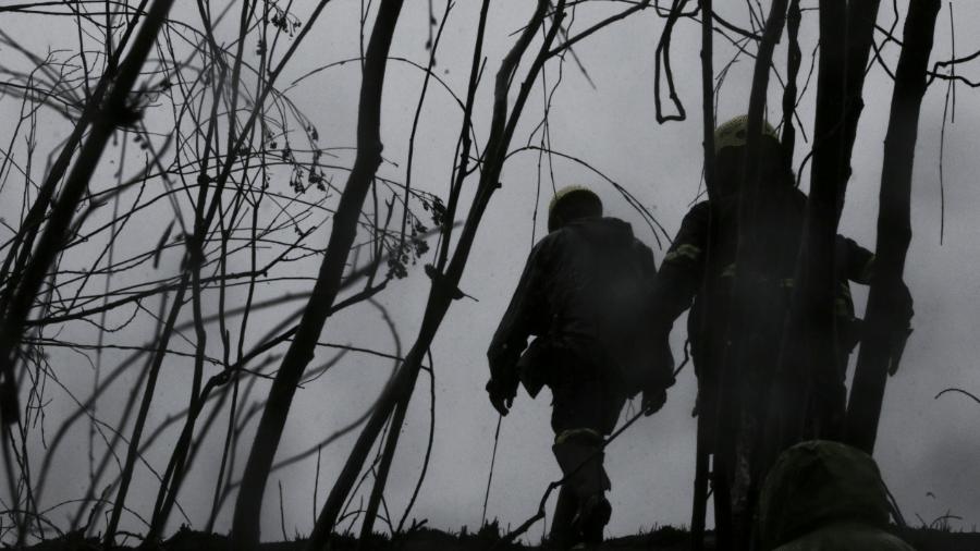 Voluntários do Grupo de Resgate de Animais em Desastre no Parque Estadual Juquery  - Ricardo Matsukawa/UOL