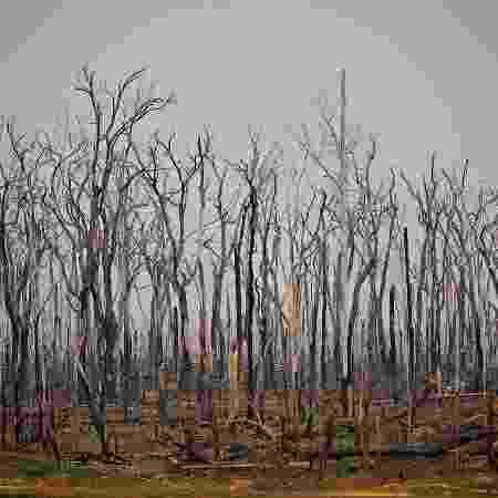 Incêndios florestais causam suspensão de operações em megacampo de gás natural no sudeste da Bolívia - Carl de Souza/AFP