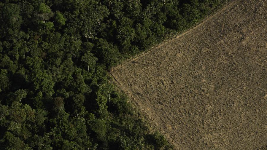Terreno desmatado e queimado nos arredores de Porto Velho, em Rondônia - Bruno Rocha/Fotoarena/Folhapress