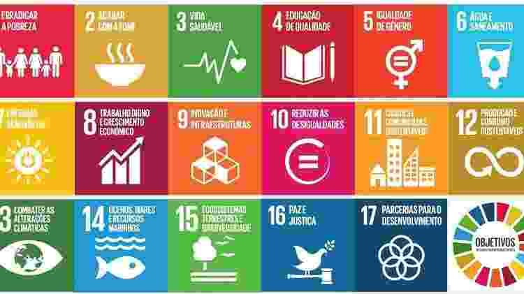 Esquema de objetivos do desenvolvimento sustentável - Reprodução - Reprodução