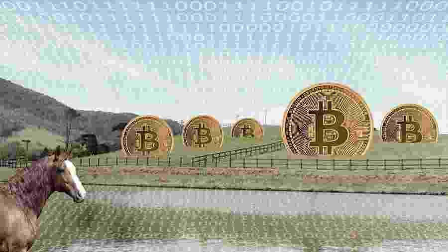 Criar bitcoins exige sempre mais poder computacional e, consequentemente, energia elétrica - UOL TAB