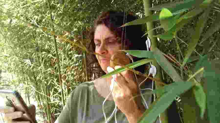 Monica Pomarico Moraes captura sons de planta usando app Plants Play - Giacomo Vicenzo/UOL