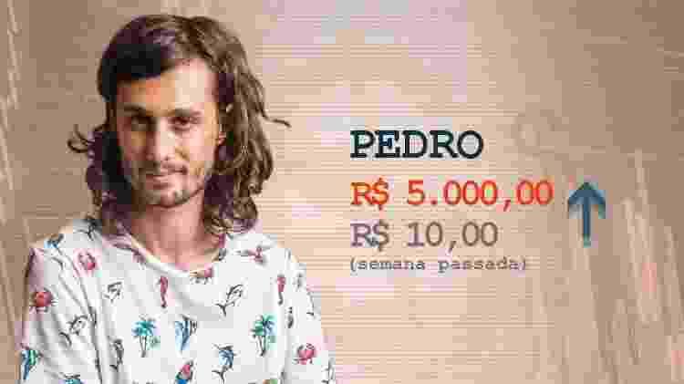 Cotação Pedro pós-terceiro paredão - Divulgação / Arte UOL - Divulgação / Arte UOL