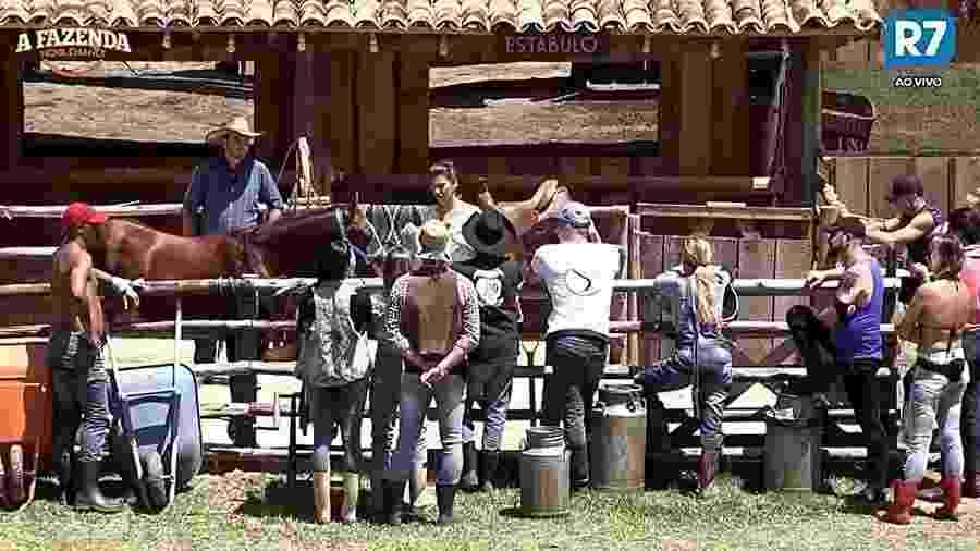Peões aprendem a cuidar do cavalo da sede - Reprodução/R7