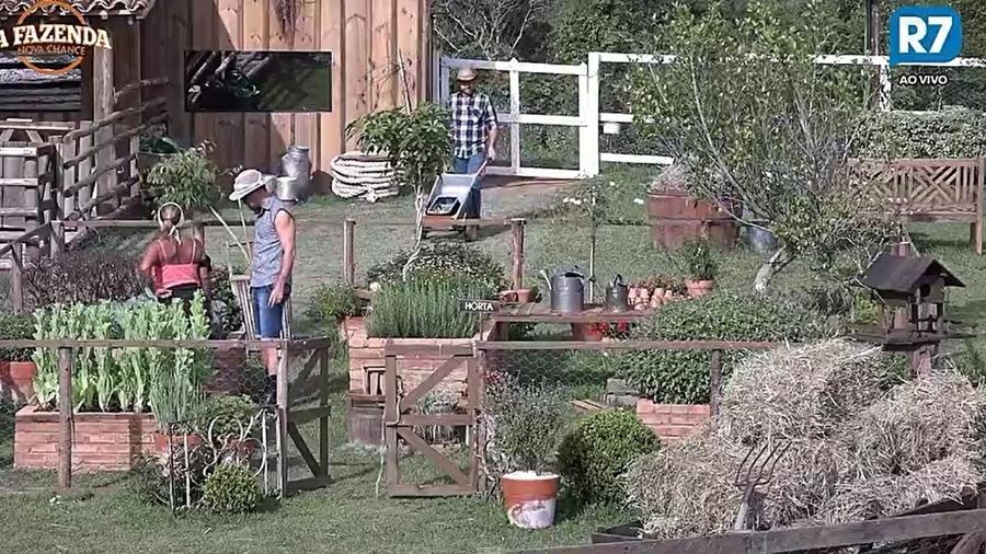 Rita e Marcelo fazem atividade extra na horta - Reprodução/R7