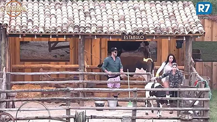 Ana Paula Minerato e Monique tentam segurar a vaca na baia - Reprodução/R7