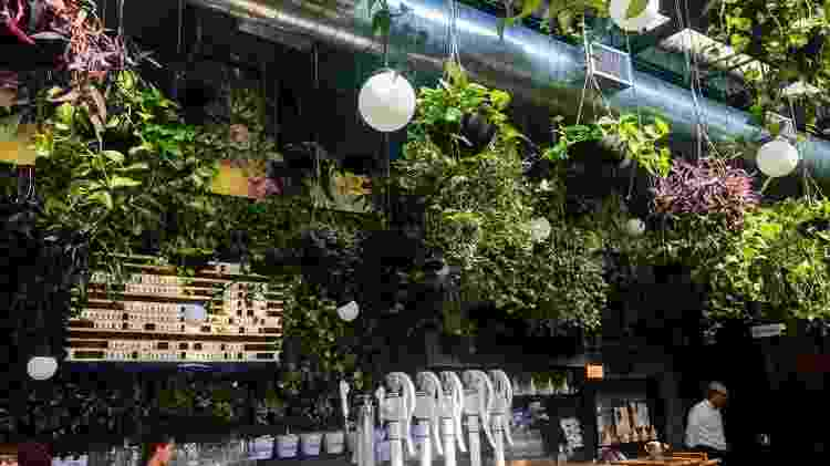 hoegaarden-greenhouse - Divulgação - Divulgação