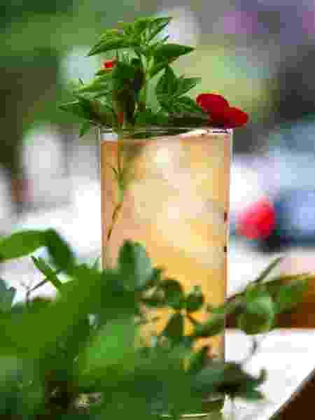Drinque La Paloma Fuerte, do Suri Ceviche Bar - Divulgação