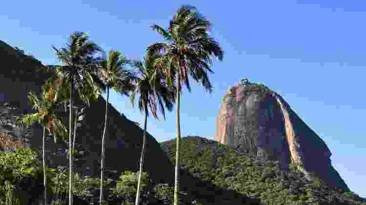 Morro da Urca - Divulgação - Divulgação