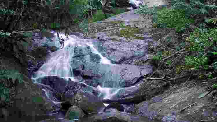 Cachoeira do Tombo - Acervo Fundação Florestal