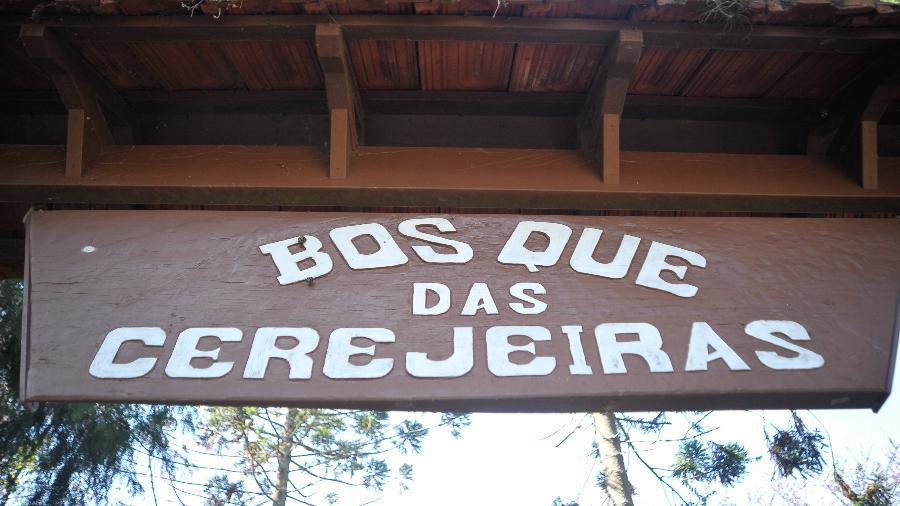 Bosque das Cerejeiras - Ricardo Bastos /Fotoarena/Folhapress