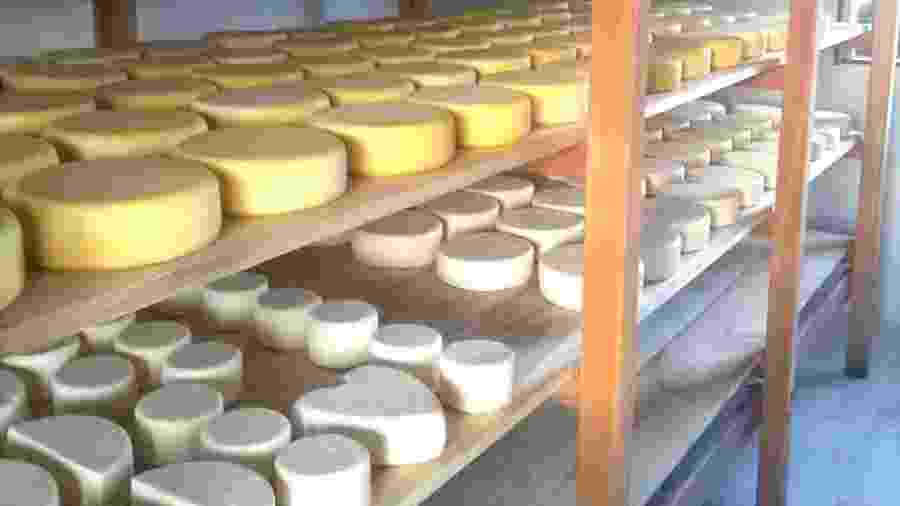 Brasileiros venceram concurso de queijos na França - Arquivo pessoal