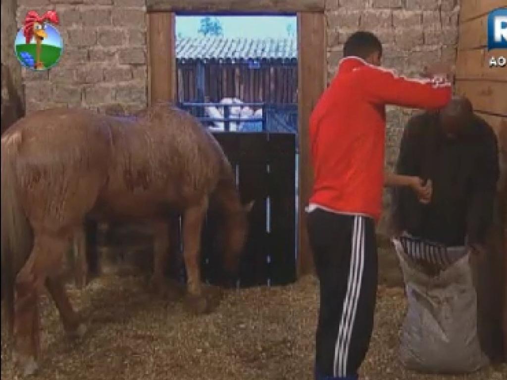 Gustavo Salyer e Lui Mendes limpam o estábulo dos cavalos (5/6/12)