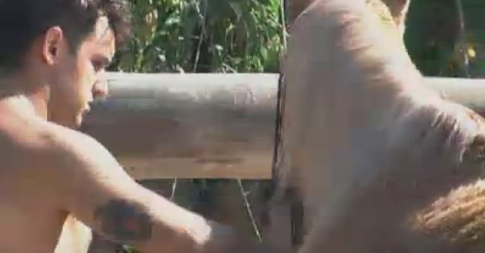 Rodrigo Capella escova crina do cavalo durante a manhã (16/6/12)