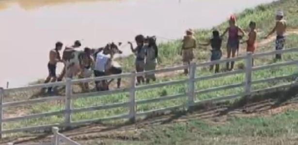 Peões tentam tirar vaca de plástico do brejo durante atividade (17/6/12)