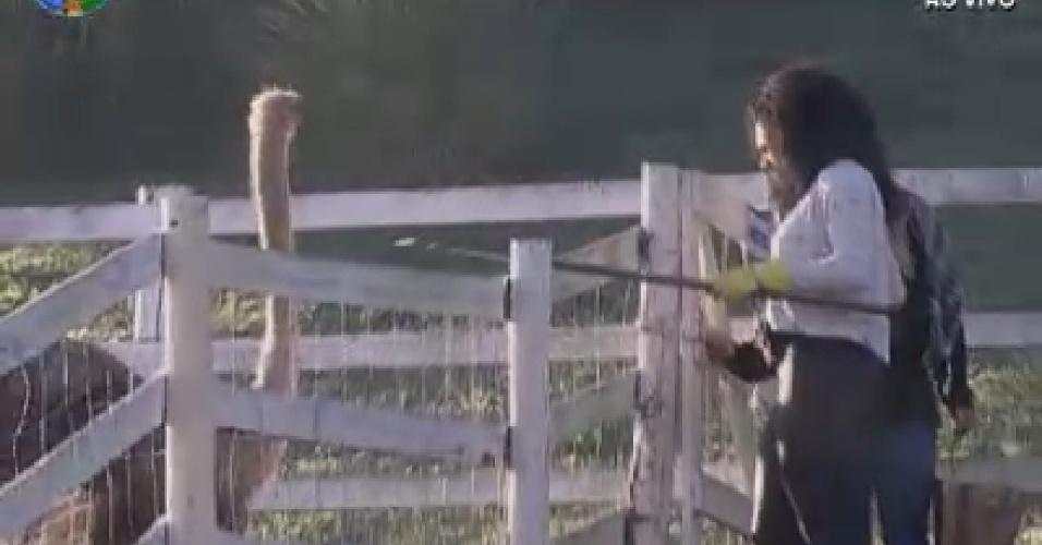 Simone Sampaio tenta afastar avestruz para dar alimentos (2/7/12)