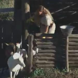 Viviane Araújo tenta expulsar cabras do chiqueiro (2/7/12)