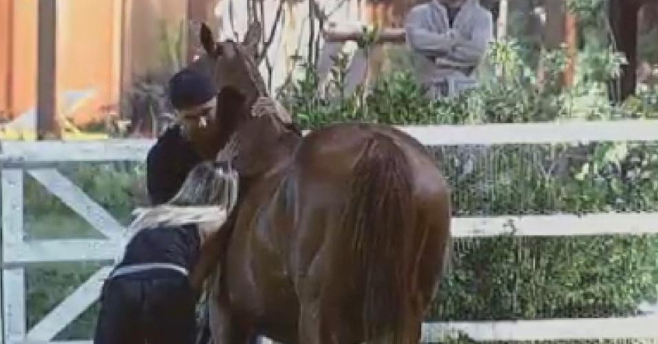 Rodrigo Capella conversa com égua enquanto Robertha Portella tenta ouvir o feto na barriga do animal (2/7/12)