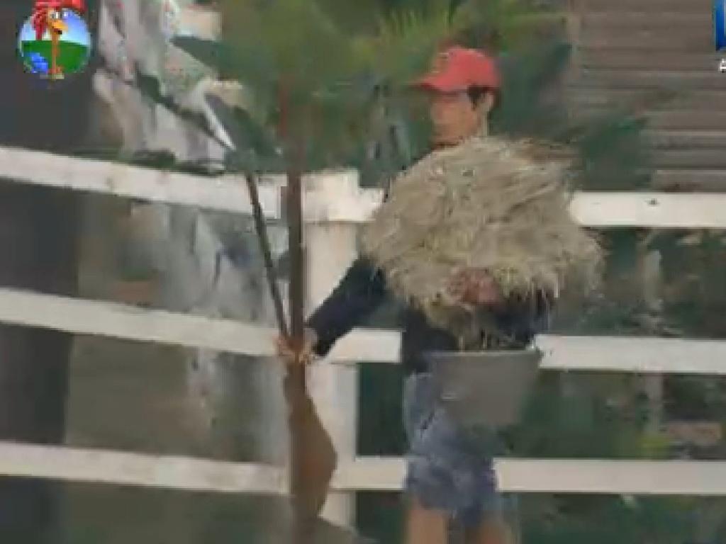 Felipe Folgosi prepara materiais para cuidar de vacas em