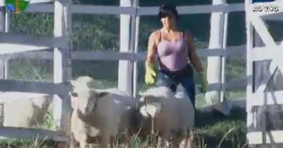 Gretchen cuida das ovelhas (6/7/12)