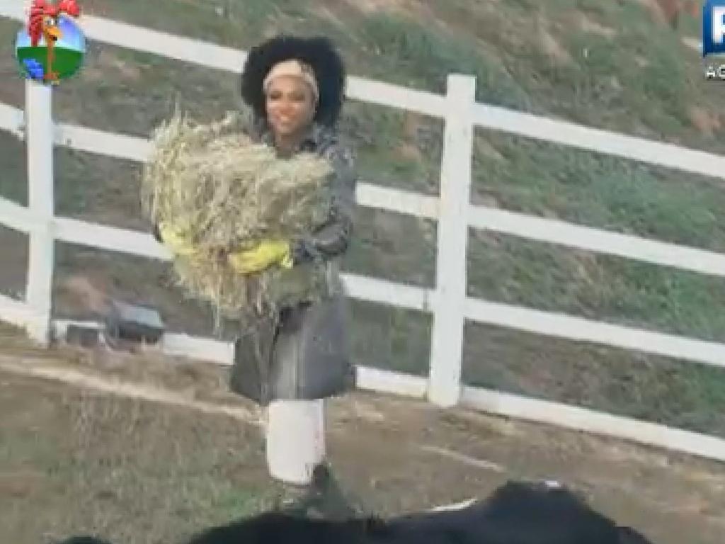 Simone Sampaio carrega materiais para cuidar das lhamas na manhã desta quarta-feira (11)