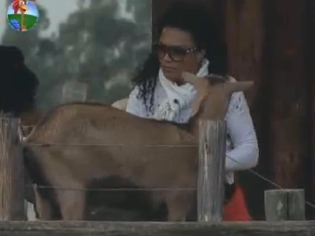 Simone Sampaio cuida das cabras (14/7/12)