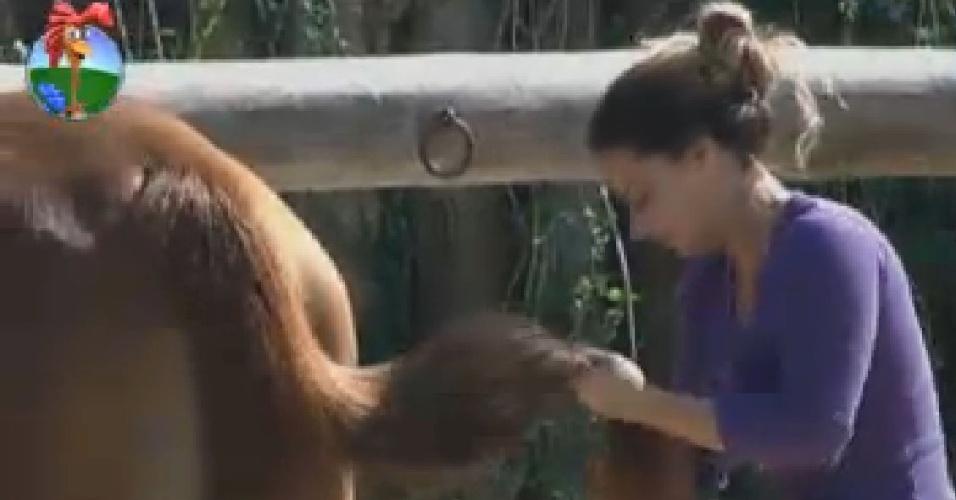 Viviane Araújo escova cavalo (14/7/12)