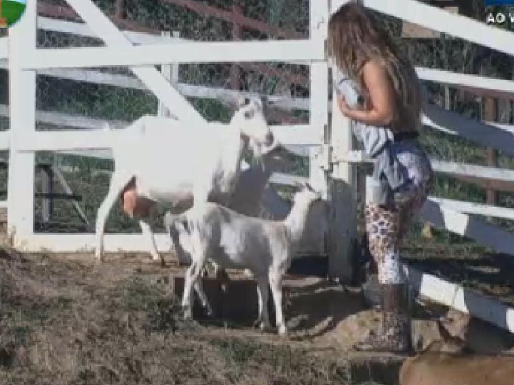 Viviane Araújo pede para cabras não morderem sua mão (21/7/12)