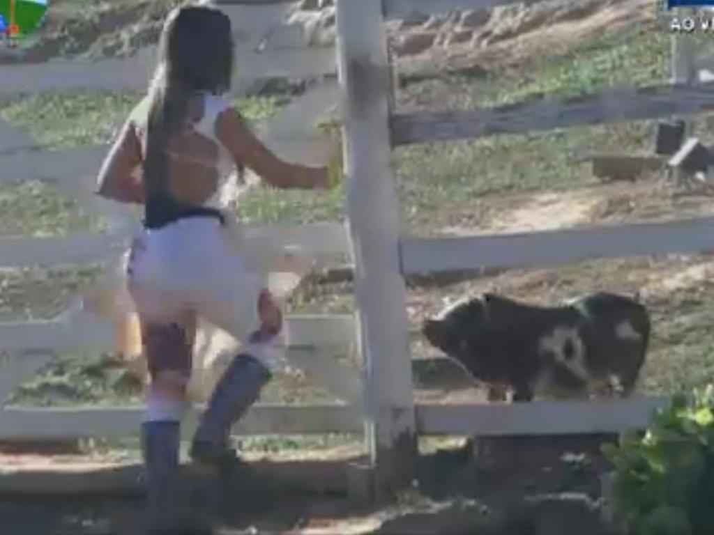 Nicole Bahls cuida dos porcos (2/8/12)