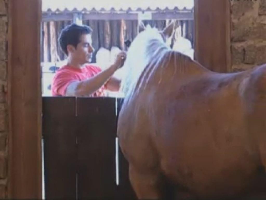 Único homem na casa, Felipe Folgosi cuida dos cavalos na manhã deste sábado (11/8/12)