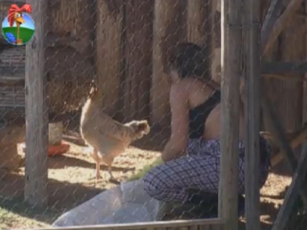Nicole Bahls conversa com as galinhas na manhã desta terça-feira (14/8/12)