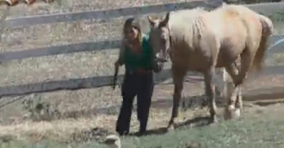 Robertha Portella cuida dos cavalos na manhã deste sábado (18/8/12)