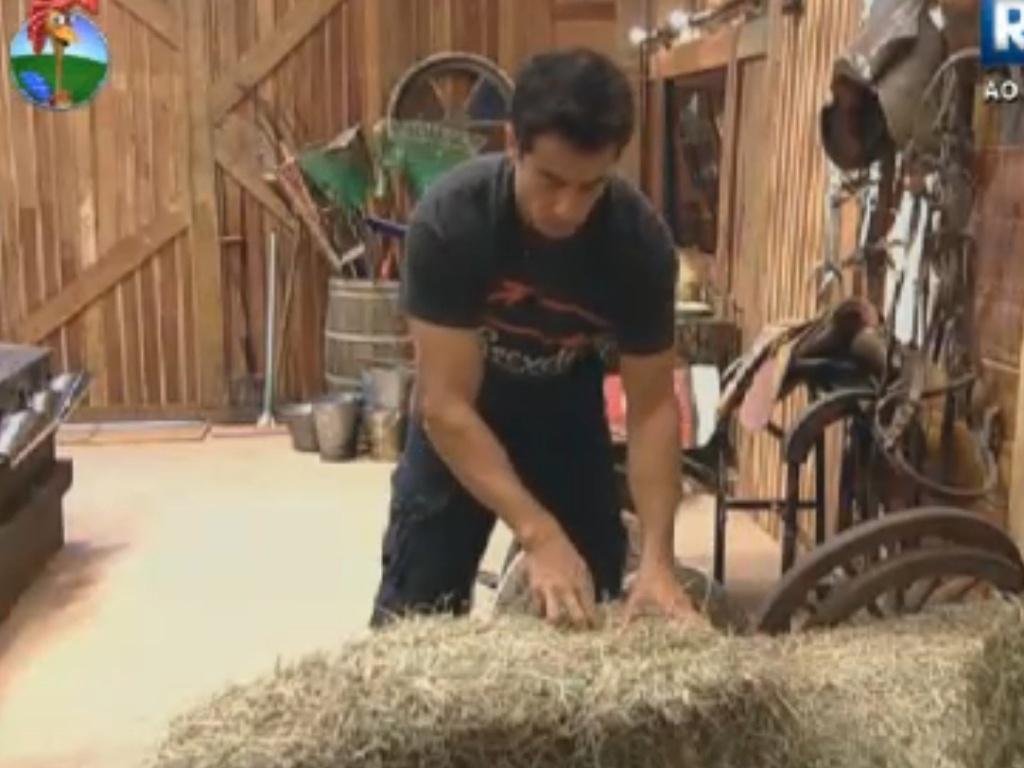 Felipe Folgosi separa feno para cumprir tarefas em