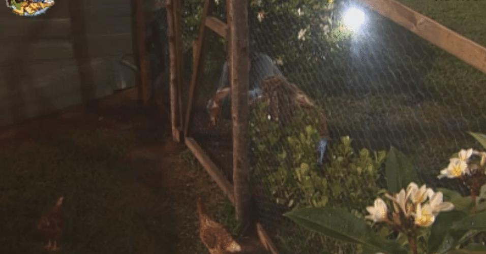 """Haysan e Karine passeiam pela """"Fazenda de Verão"""" e interagem com as galinhas"""