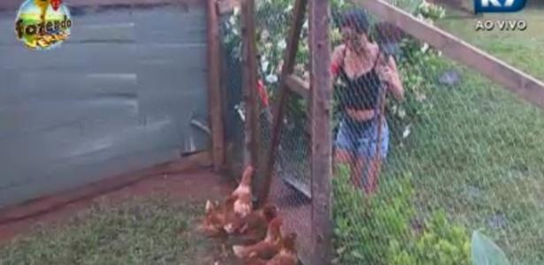 Flavia cuida das galinhas em seu primeiro dia de tarefas como Formiga