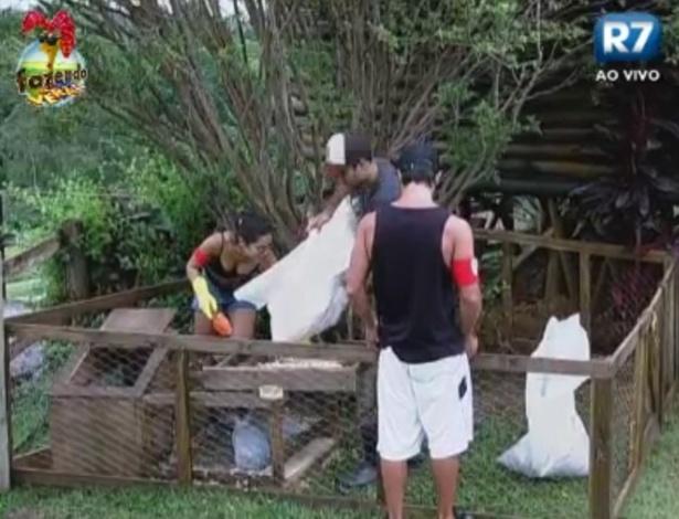 Flavia, Dan e Victor se ajudam para cuidar dos coelhos