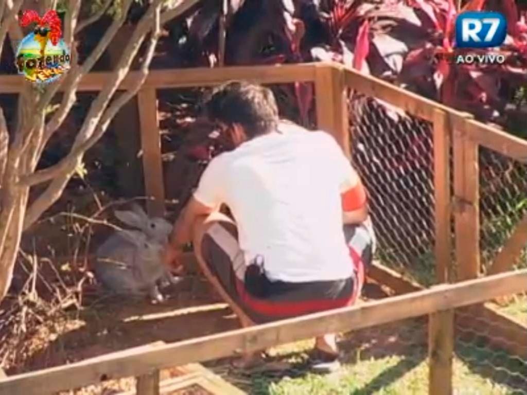 Flavia e Carril cuidam dos coelhos