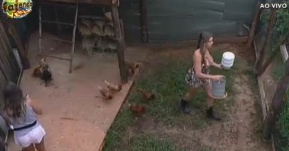 Manoella e Angelis cuidam da s galinhas