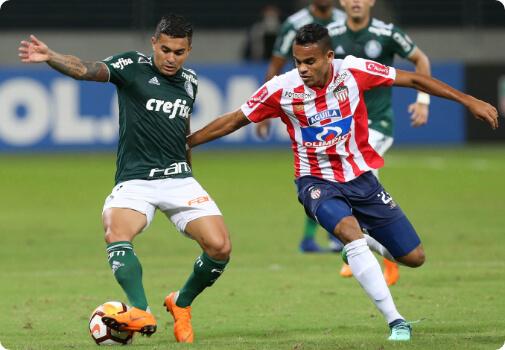 Assista Copa Libertadores - Fox Sports | UOL Esporte Clube